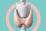 A tireoide ajuda a ditar o ritmo de funcionamento de todo o corpo.  (Foto: Jonatan Sarmento/Saúde é Vital)