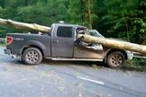 Carro onde pastor estava quando foi atingido por uma imensa árvore. (Foto: Reprodução/Facebook)