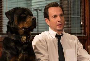 """Cena do filme """"Show Dogs"""". (Imagem: The Independent)"""