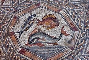 Parte do mosaico de 1.700 anos da era romana descoberto em Israel. (Foto: Assaf Peretz/ Autoridade de Antiguidades de Israel).