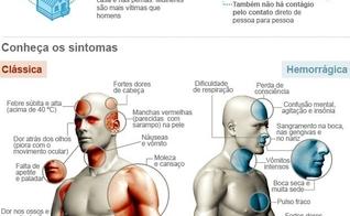 casos de dengue em São Paulo