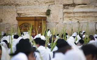 Judeus durante Festa dos Tabernáculos em Jerusalém, Israel. (Foto: First Fruits of Zion)