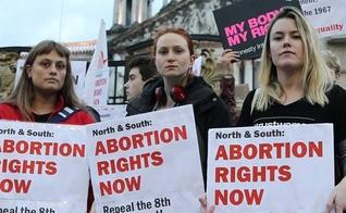 Irlanda votou pela legalização do aborto nesta semana. (Foto: The Gryphon)