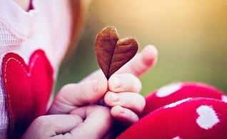 Folha em forma de coração.