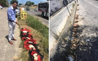 A igreja foi alvo de rituais com nove galinhas mortas e 24 alguidares com oferendas. (Foto: Reprodução/Facebook)