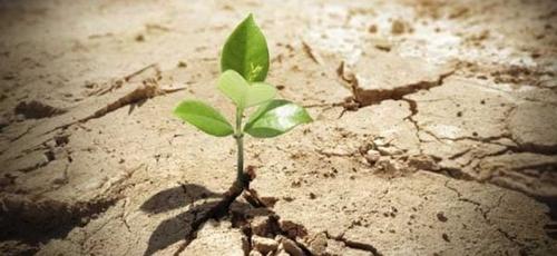 Esperança. (Foto: Quadrangular Sergipe)