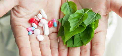 Conheça alimentos cuja capacidade é promover saúde ao corpo e a mente. (Foto: Reprodução)