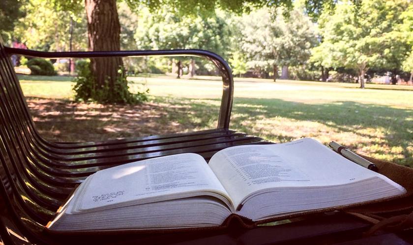 As Bíblias são deixadas em locais públicos da cidade. (Foto: Reprodução)