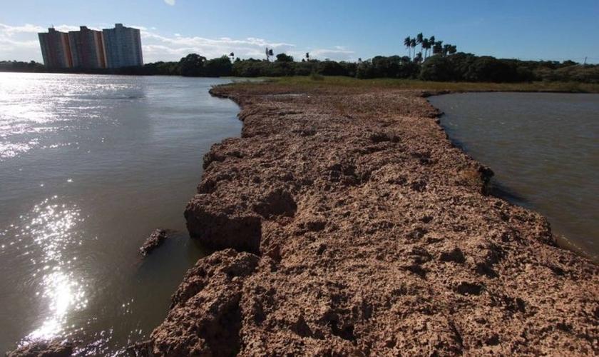 Rio Paraíba do sul seco