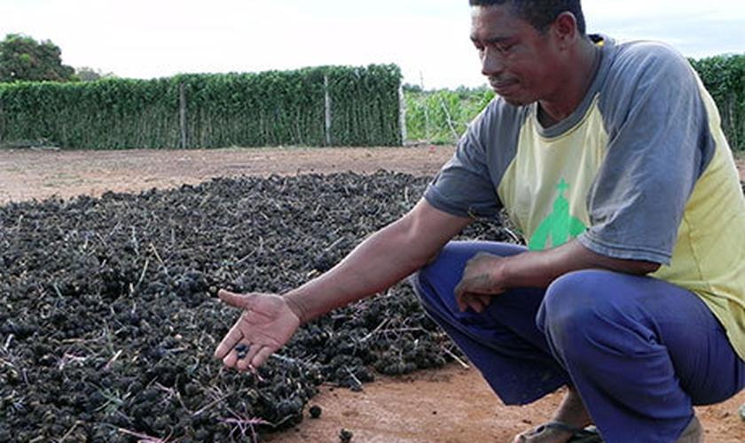 IBGE: Baianos e maranhenses são os nordestinos que mais migraram
