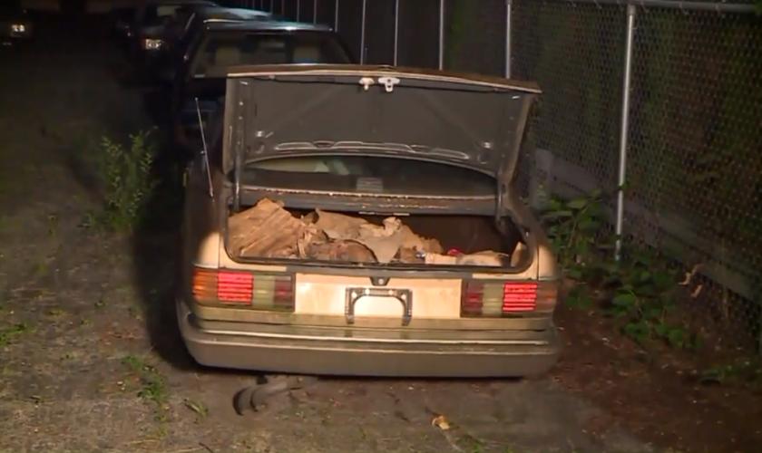 O carro de foi encontrado junto a outros automóveis, em um estacionamento que ele estava alugando para manter o veículo. (Foto: Ulrich Klopfer)