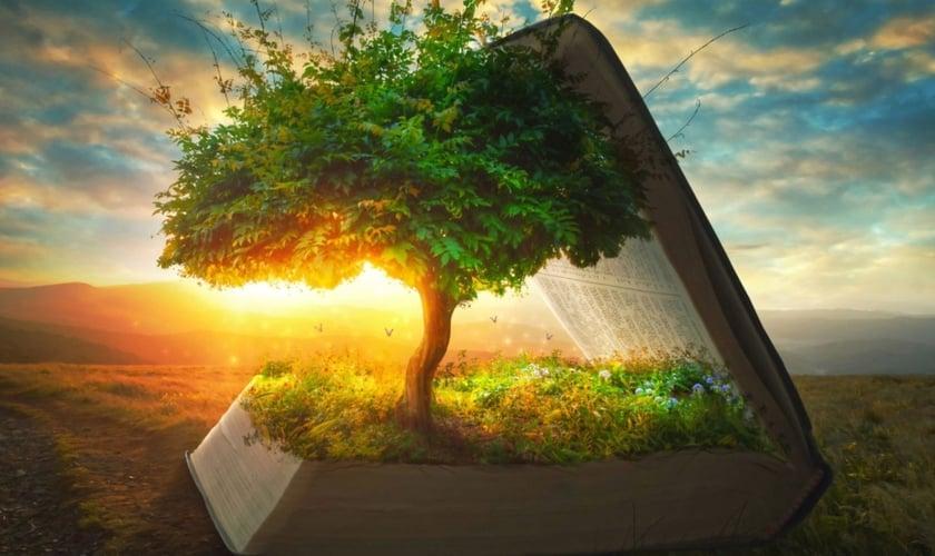 Árvore dentro da Bíblia. (Foto: Pinterest)