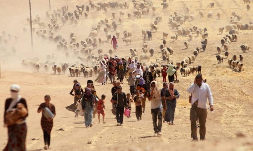 Refugiados do Iraque