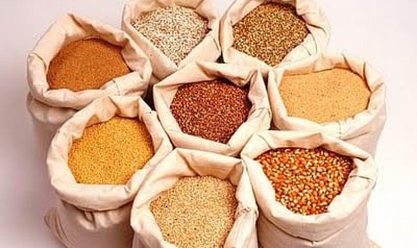 grãos integrais