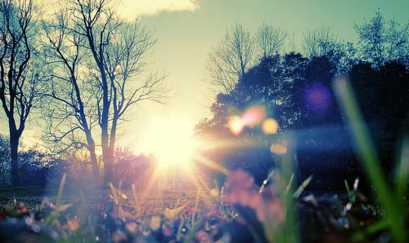 Natureza _ Imagem ilustrativa
