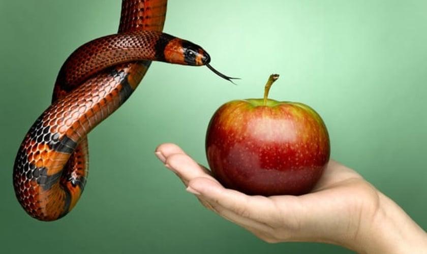 Serpente e maçã. (Foto: Getty)