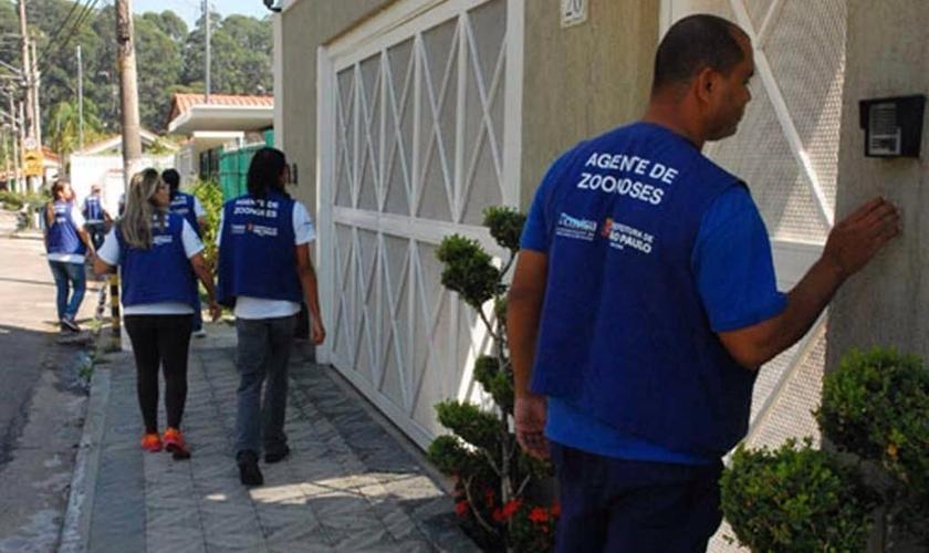 Casos de dengue em SP