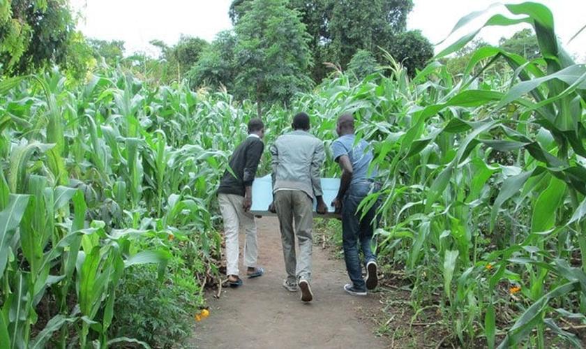 Biofiltros doados em Uganda