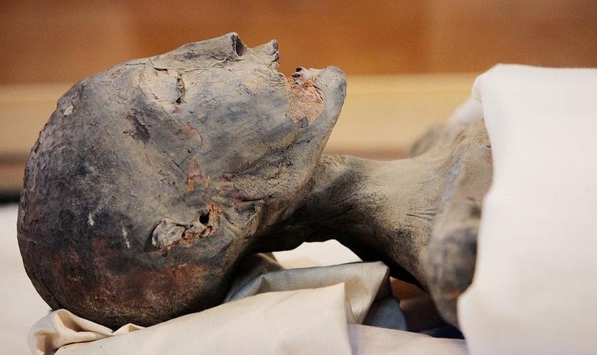 Múmia durante pesquisas. (Imagem: Discovery Channel via Getty Images)