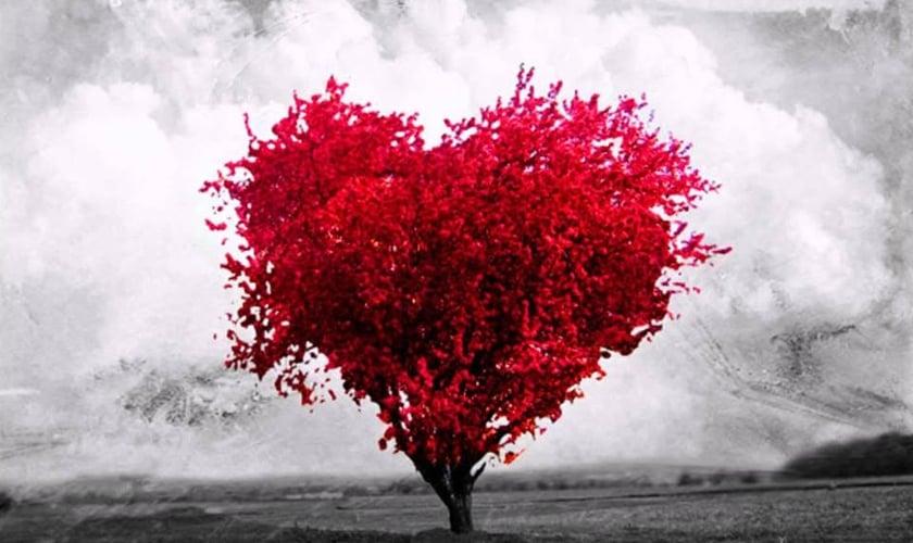 Árvore em formato de coração. (Foto: Facebook)