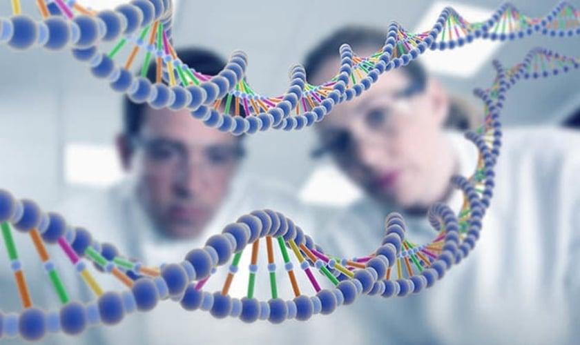 As descobertas colocam em cheque os padrões de evolução aceitos pela ciência. (Foto: Reprodução).