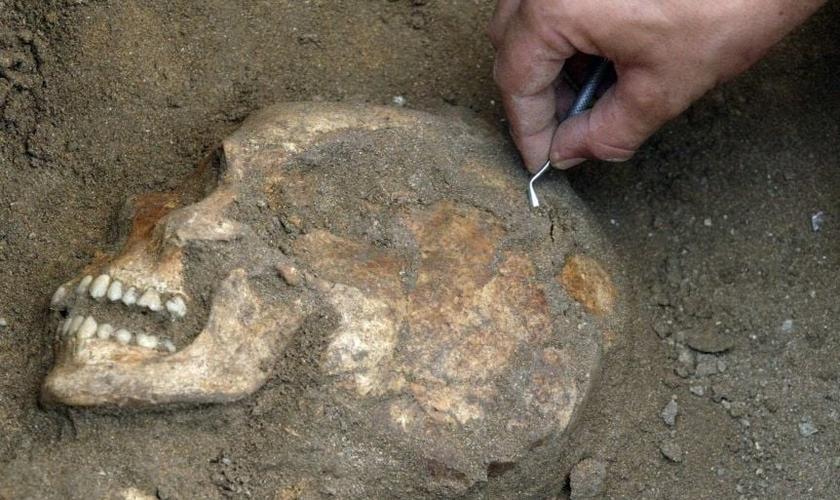 Arqueólogo descobre o crânio de um habitante de Sídon, que já foi um porto cananeu na costa do Líbano. (Foto: Mahmoud Zayat, AFP/Getty Images)