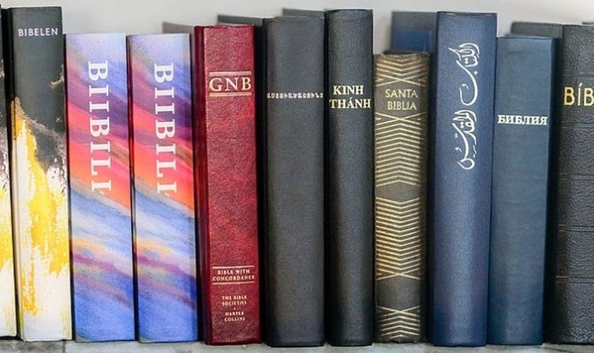 Bíblias expostas na estante. (Inquisitr)