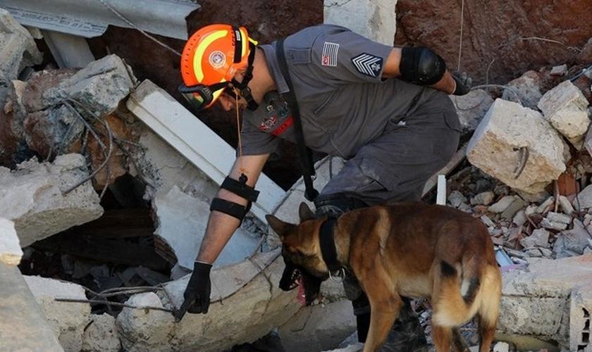 Os bombeiros decidiram mudar de tática e passaram a trabalhar em silêncio absoluto, com a ajuda de cães treinados para esse tipo de resgate. (Foto: G1)