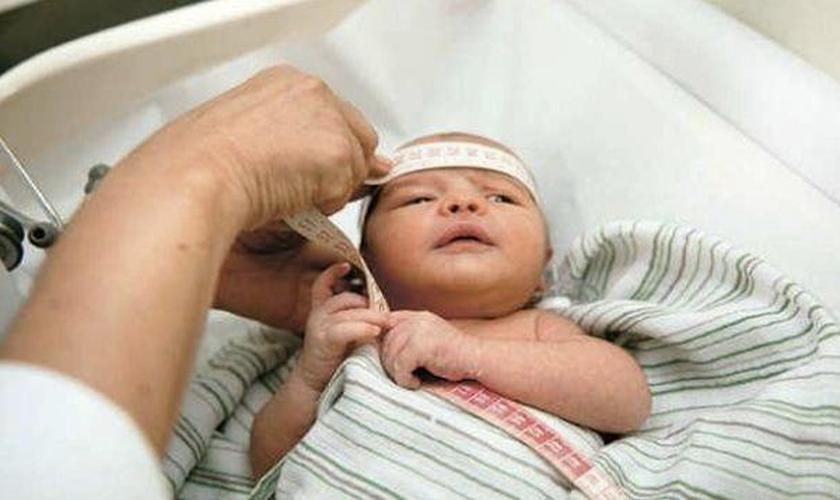 Atualmente, o vírus está sendo ligado à causa de mais de 1.600 casos de microcefalia - uma malformação craniana - em bebês ainda na fase de gestação. (Foto: Paraíba.com.br)