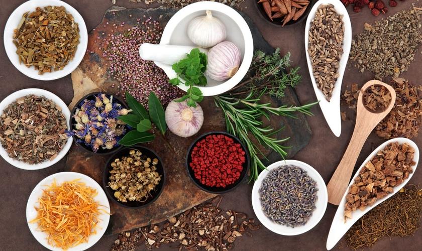 Veja quais alimentos podem ajudar na prevenção de doenças. (Foto: Reprodução)