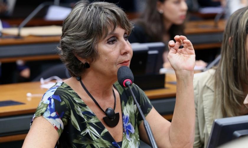 A deputada Èrica Kokay foi responsável por duas das quatro ressalvas que mantém o Estatuto na Câmara e afirmou que está disposta a fazer o possível para atrasar esta votação.