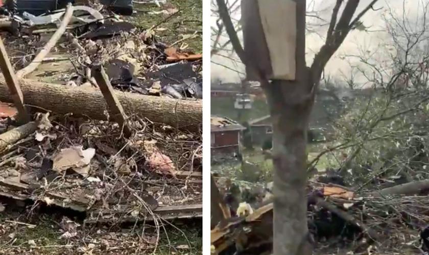 Bíblia encontrada em árvore: intacta após tornado. (Foto: Reprodução/Big Cee O'Neal)