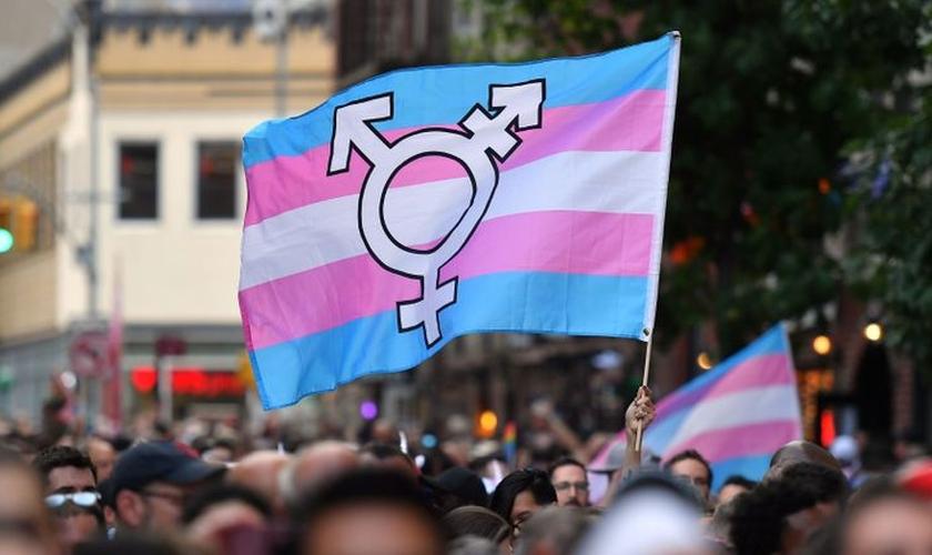 Bandeira de ativismo transgênero. (Foto: Reprodução/Sky News)