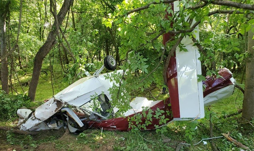 Avião destruído após queda em mata; piloto sobreviveu. (Foto: Reprodução/Facebook)