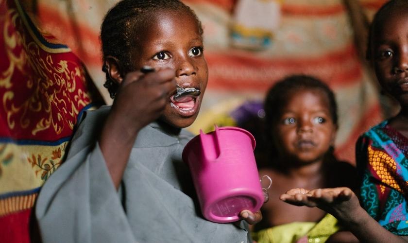 Mais de 9.000 famílias da Nigéria não sabem o que irão comer e de onde virá o alimento. (Foto: ACF Nigeria)