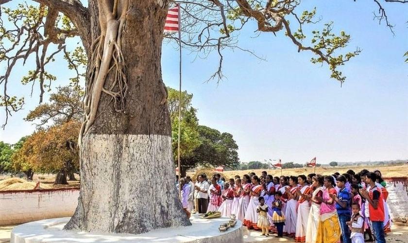 Aldeões em ritual de adoração tribal na árvore sarna. (Foto: Reprodução / Gurpreet Singh Ranchi)