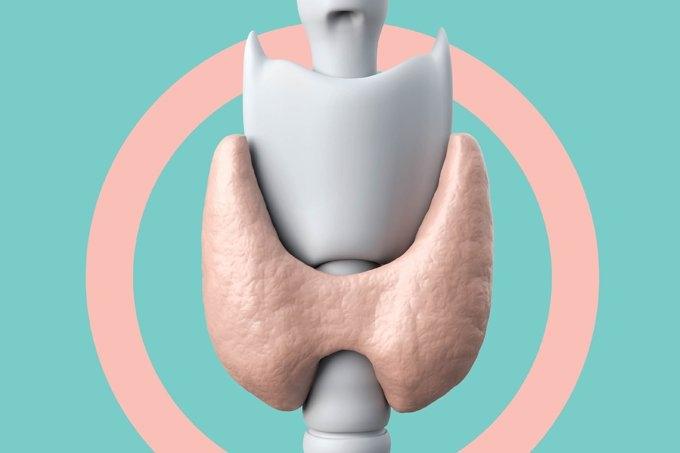10 mitos e verdades sobre a tireoide