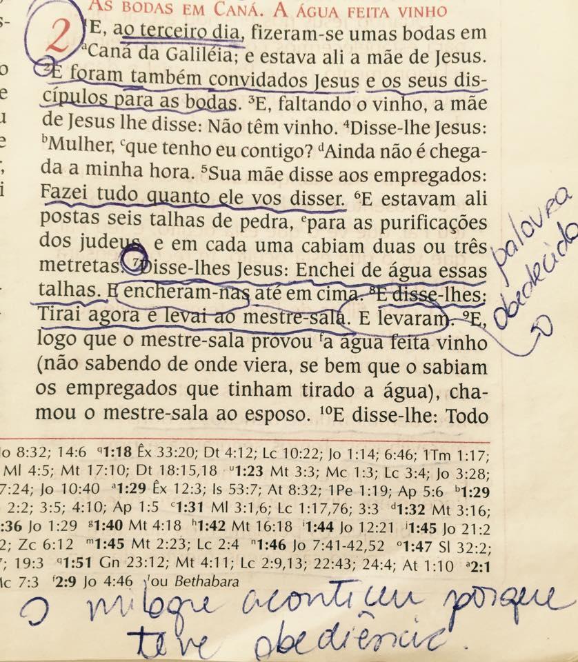 Bíblia da Aline Barros